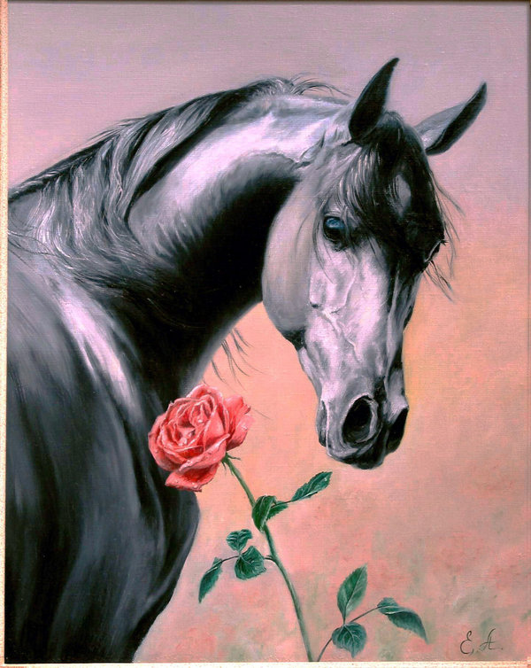 horse_and_rose_by_stefan69.jpg